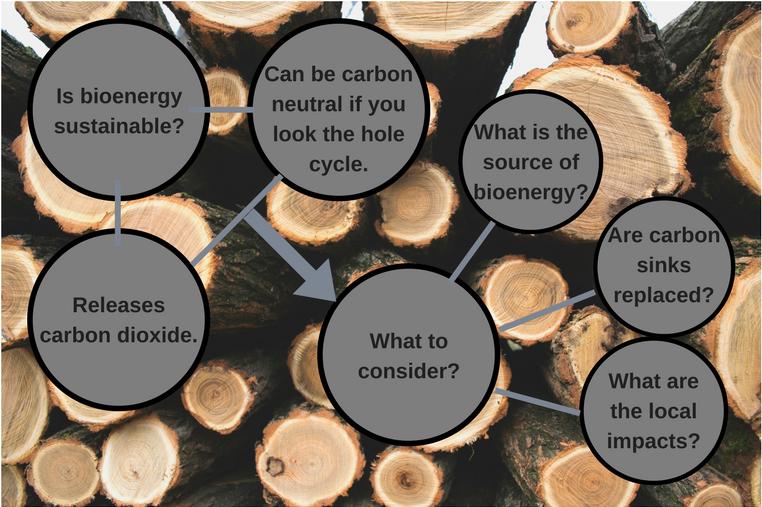 Is bioenergysustaina